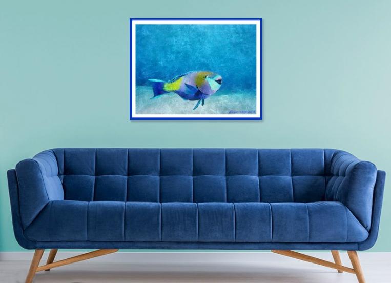 Parrot Fish Framed In Situ