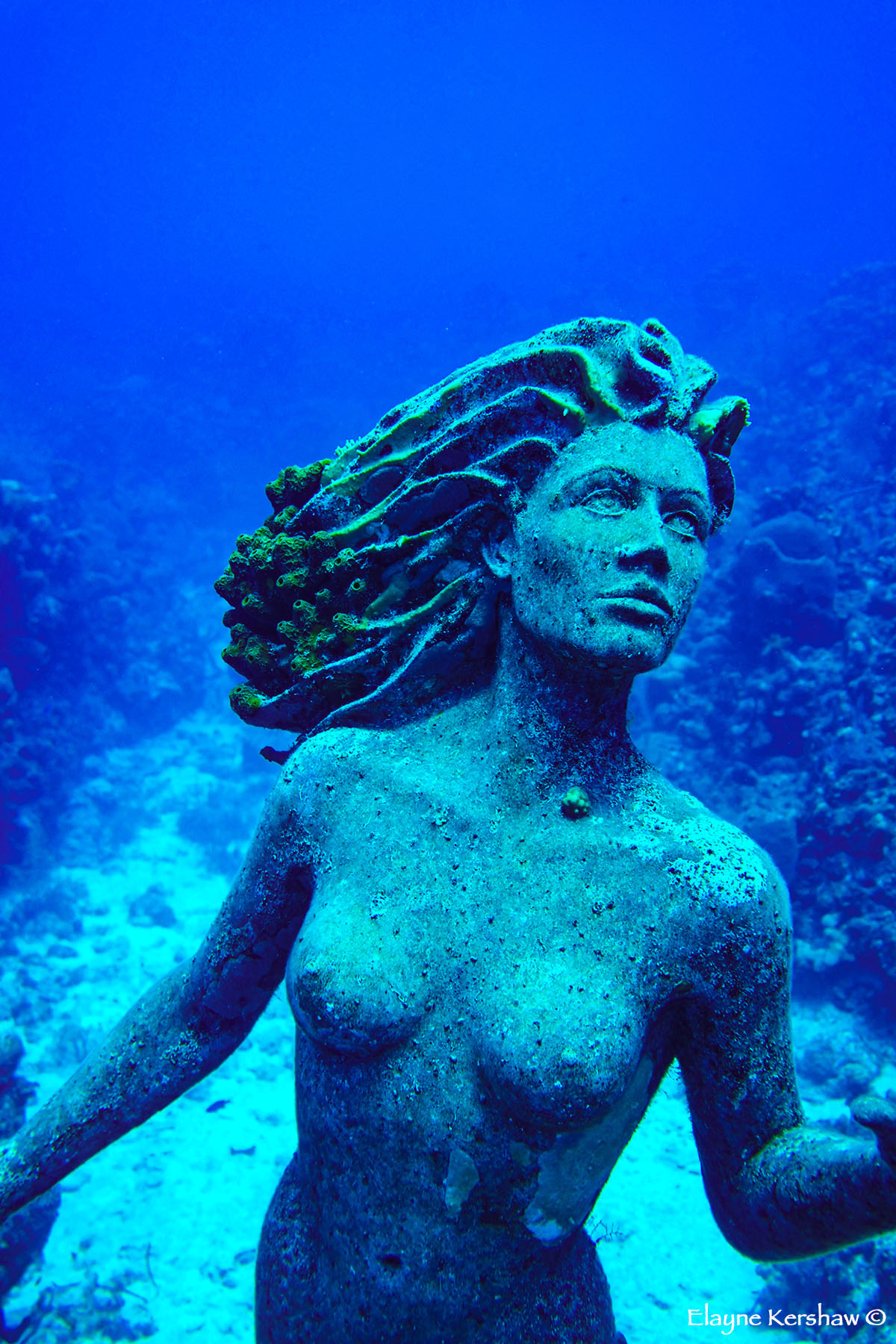 Mermaid of Grand Cayman